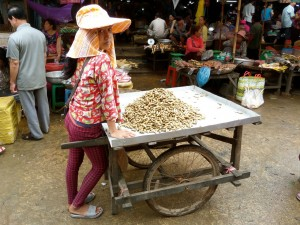 Oscar wends his way through the market in Siem Reap, Cambodia